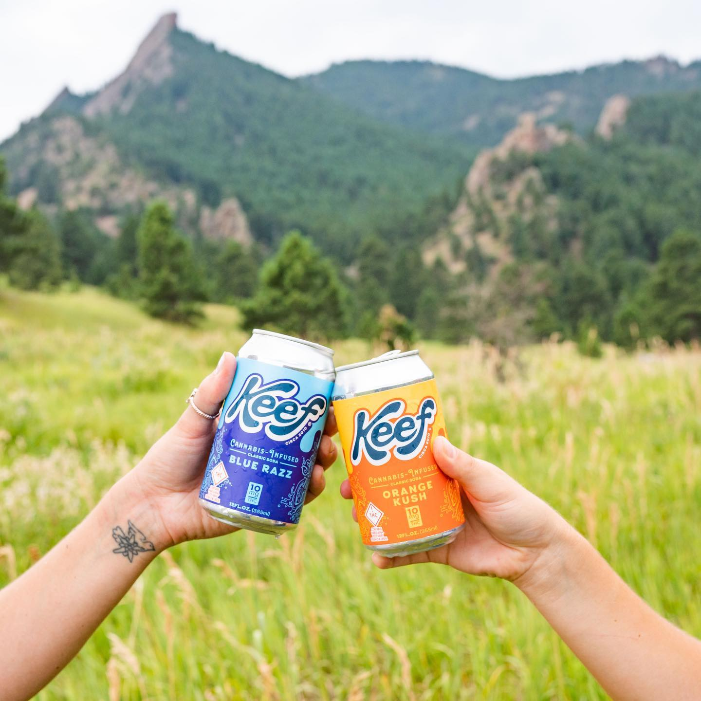 keef soda cans in nature