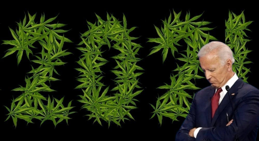 Bidenmarijuana2021
